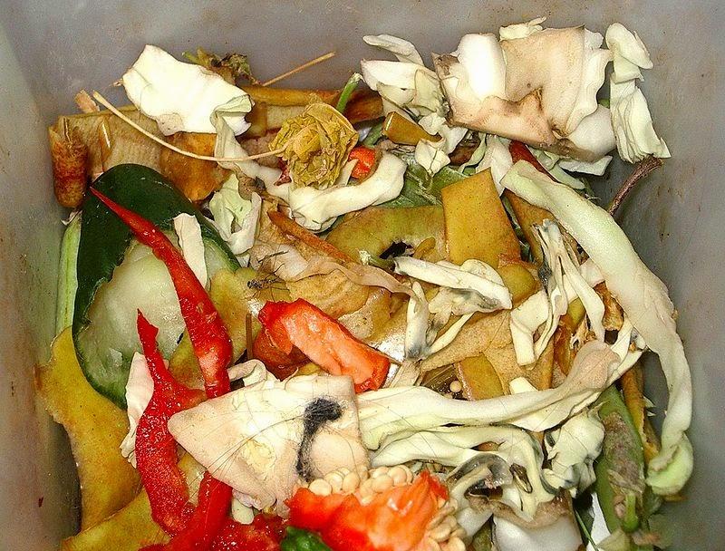Seattle: törvényes ösztönzés a komposztálásra