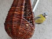 A madarak téli etetése