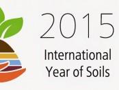 2015: A Talajok Nemzetközi Éve