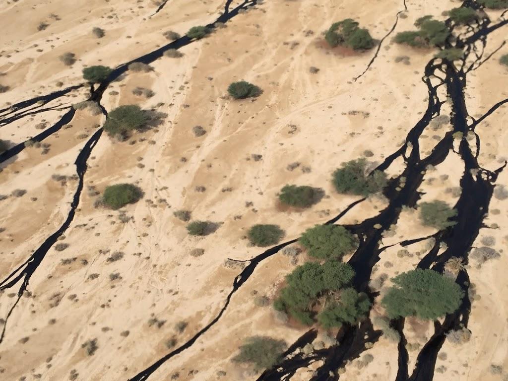 Olajszennyezés egy izraeli nemzeti parkban