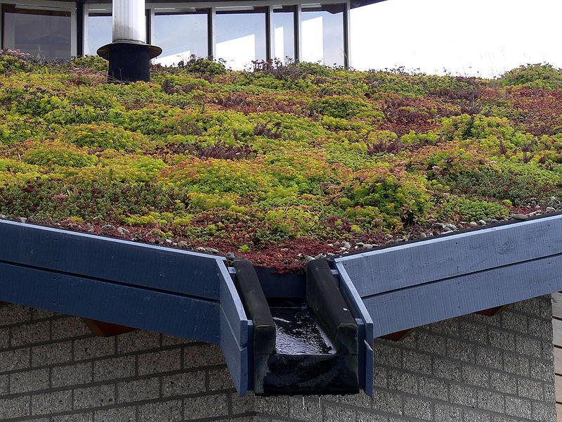 Egyre több zöld tető Franciaországban