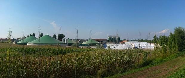 Biogáz erőmű fogja hasznosítani a torontói állatkert
