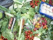 Hogyan tudod megszüntetni az otthoni ételhulladékot?