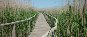 Fedezd fel hazánk védett természeti területeit!
