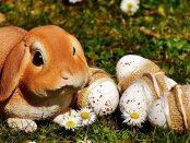 10 döntés, amivel zöldebbé teheted a Húsvétot