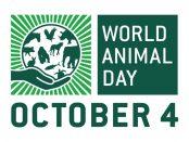 Ünnepeld te is az Állatok Világnapját!