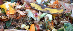 Újévi zöld kihívási tipp: kevesebb ételhulladék