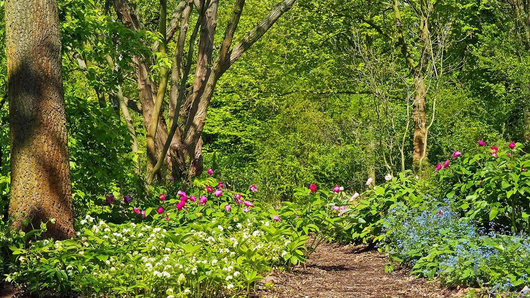 10 kihagyhatatlan áprilisi program nemzeti parkjainkban