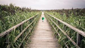 9 környezeti téma, ami elindíthatja gyermeked a tudatosság útján