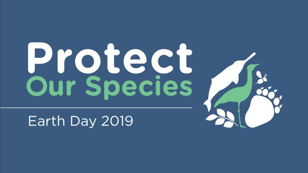 Védd a természet sokféleségét – ez a Föld Napja üzenete