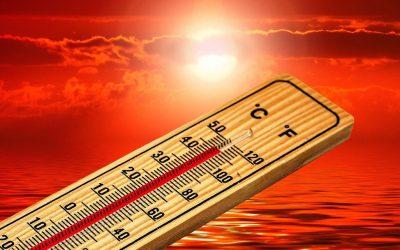 Újabb csúcs – 2019 volt a legmelegebb évünk