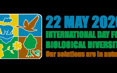 A biológiai sokféleség ünnepe – május 22.